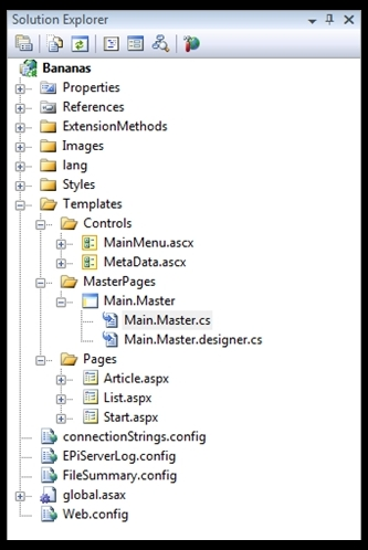 Visual Studio Solution Explorer at the starting point